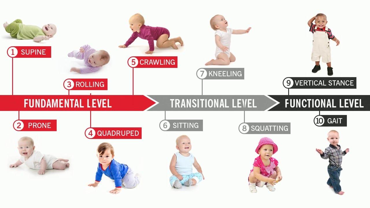 rozwój aparatu ruchowego u dziecka